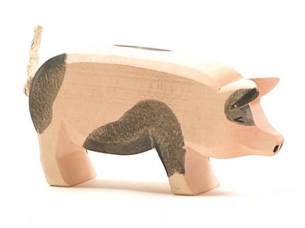 Schwein gefleckt Kopf Hoch Ostheimer 10951